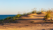 14th Oct 2020 - Sand Dunes in Shadow