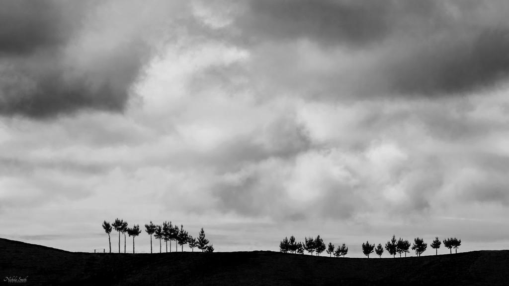 Distant Skyline by nickspicsnz