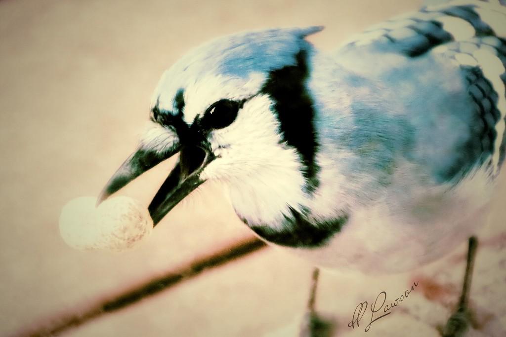 My Little Buddy by flygirl