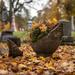 crawling around cemeteries again... by jackies365