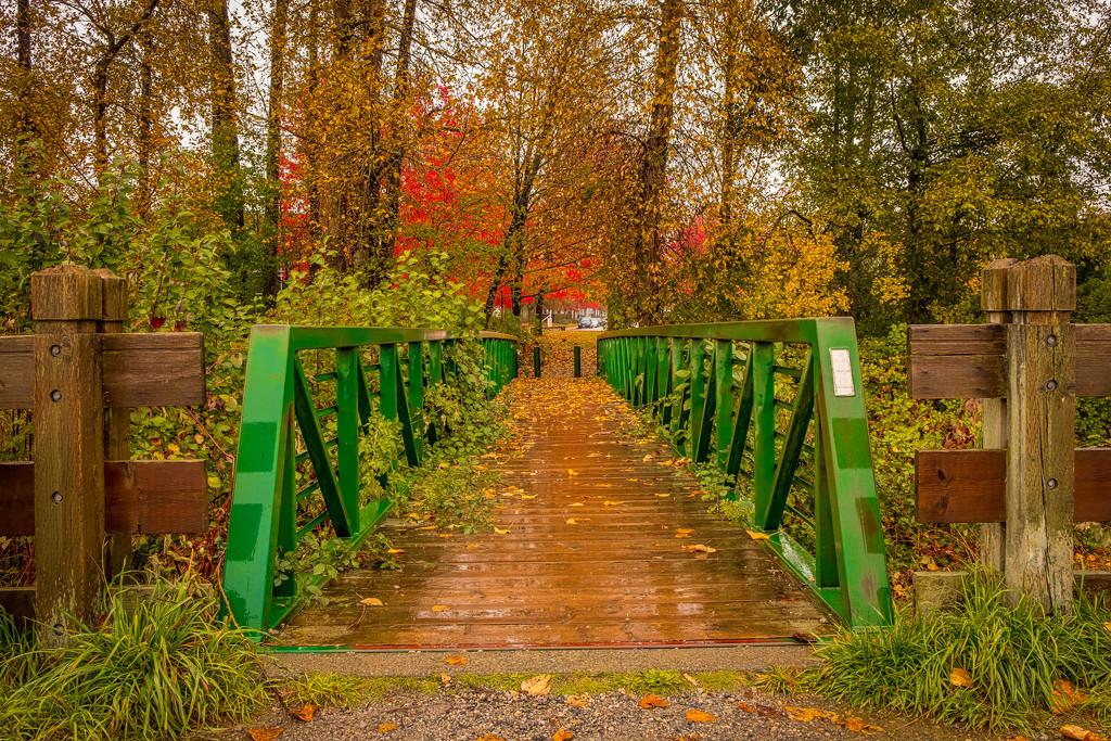 Green Footbridge  by cdcook48