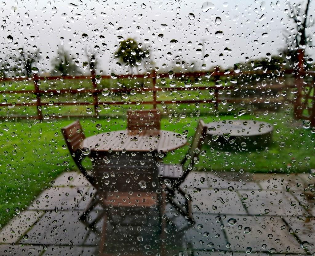 Wet afternoon at home  by flowerfairyann