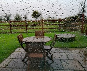 24th Oct 2020 - Wet afternoon at home