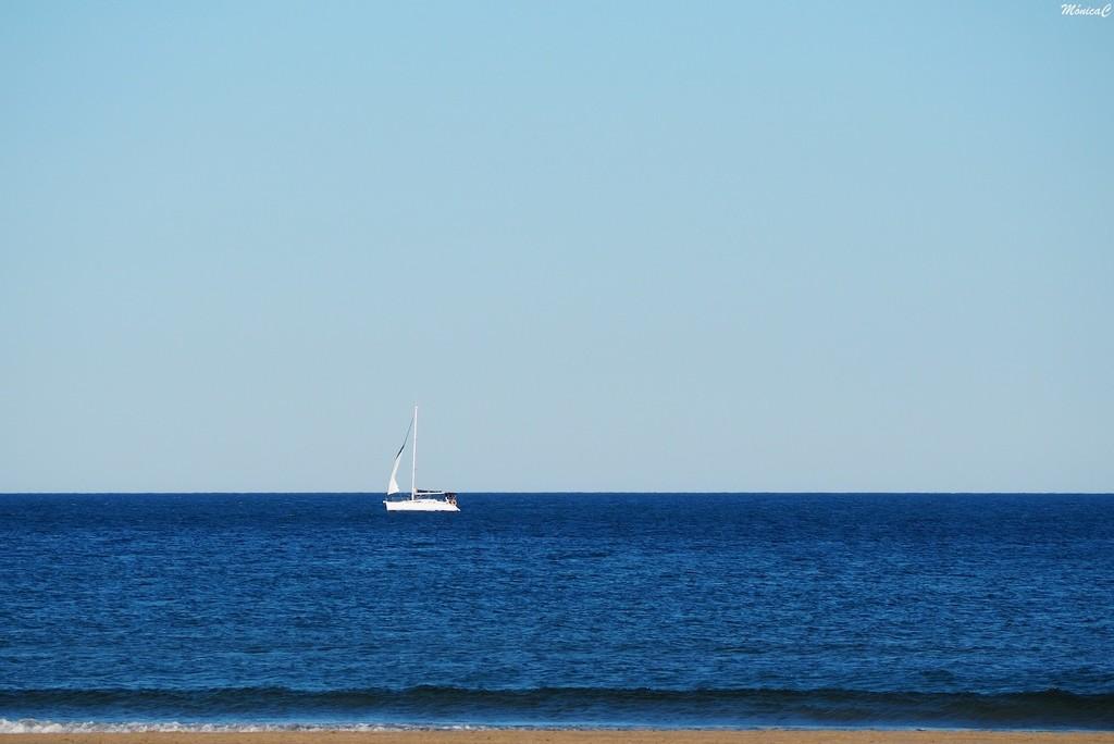 Sailing by monicac