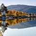 Autumn on Svorksjøen