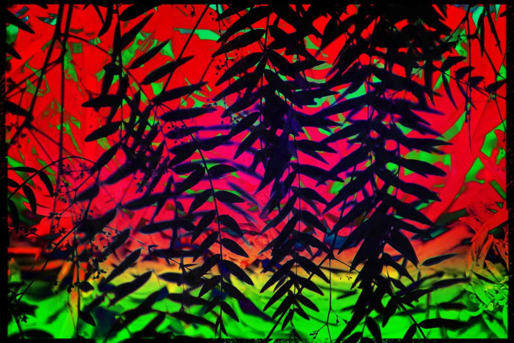 Fern abstract abstract-46 by kathyboyles