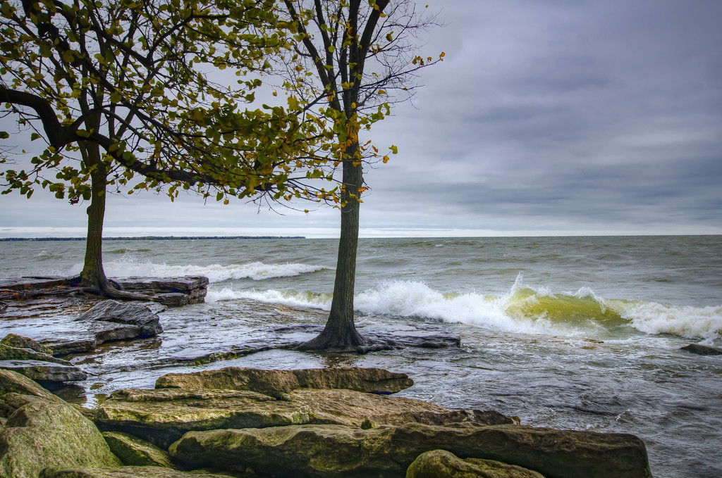 Raw Afternoon on Lake Erie by ggshearron