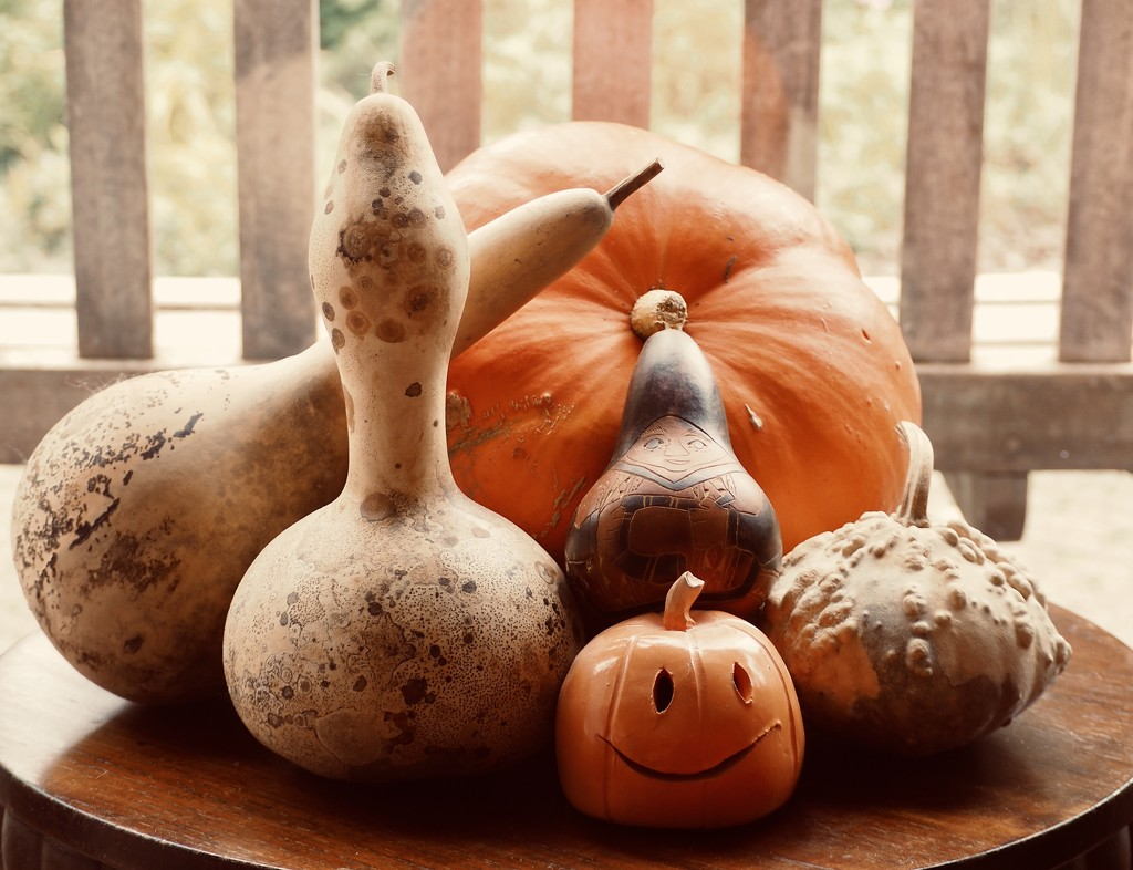 Gourds by jacqbb