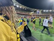 24th Oct 2020 - Richmond (tigers) won
