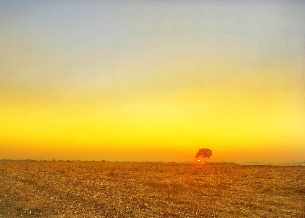 Birthday Sunrise  by zambianlass