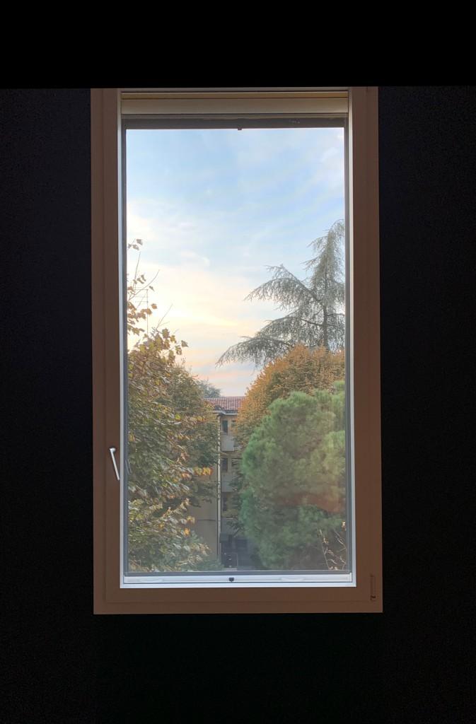 Autumn window by caterina