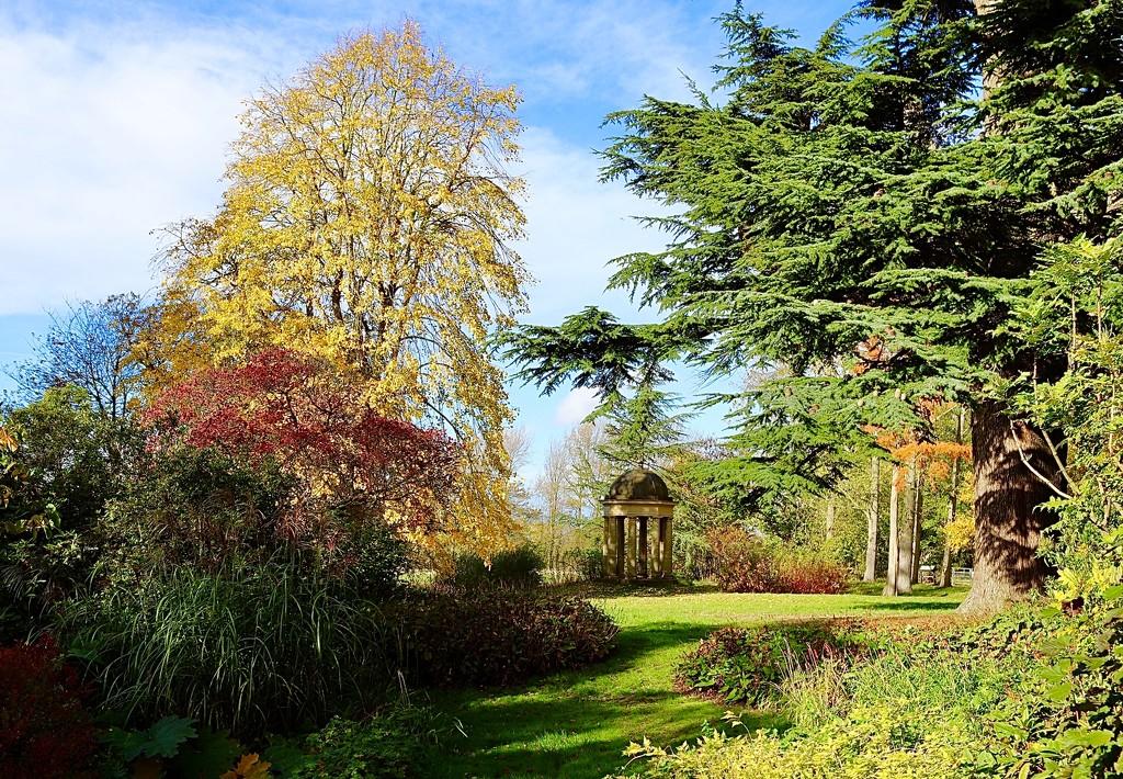 Doddington Gardens by carole_sandford