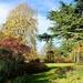 Doddington Gardens