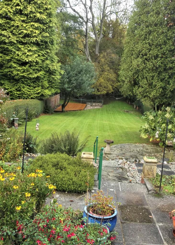 Lawn has had it's last trim of the year...... by boatman137