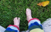 20th Oct 2020 - Feel the grass beneath your toes