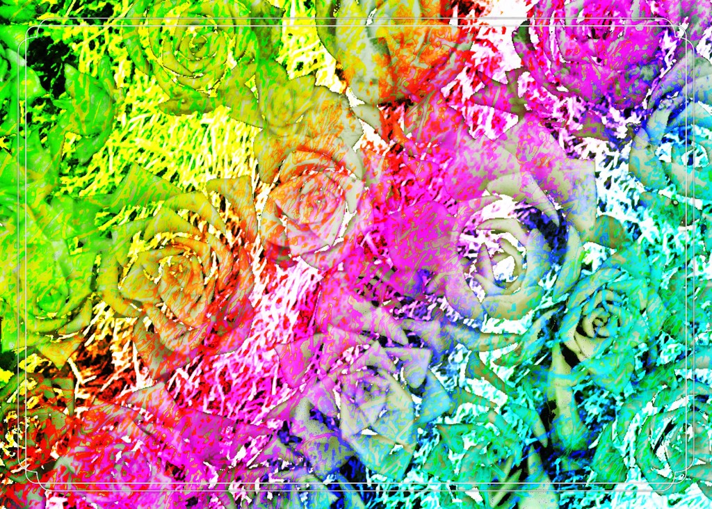 Cactus macro abstract abstract-46 by kathyboyles
