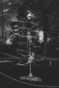 25th Oct 2020 - Halloween Decorations