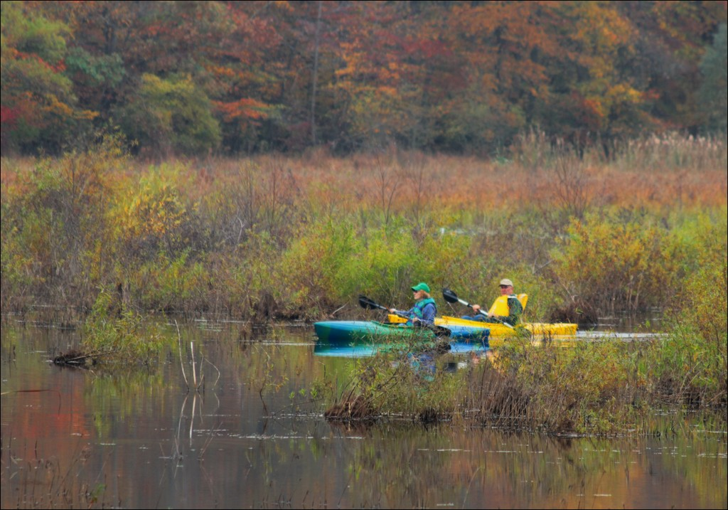 Paddling Through the Autumn Colors by olivetreeann