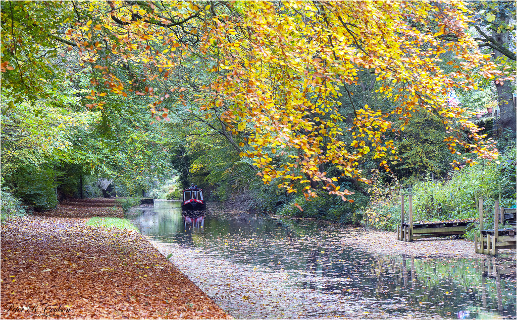Autumnal Water by pcoulson
