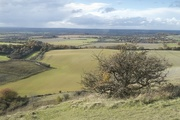 25th Oct 2020 - Dunstable downs