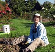 12th Oct 2020 - gardener