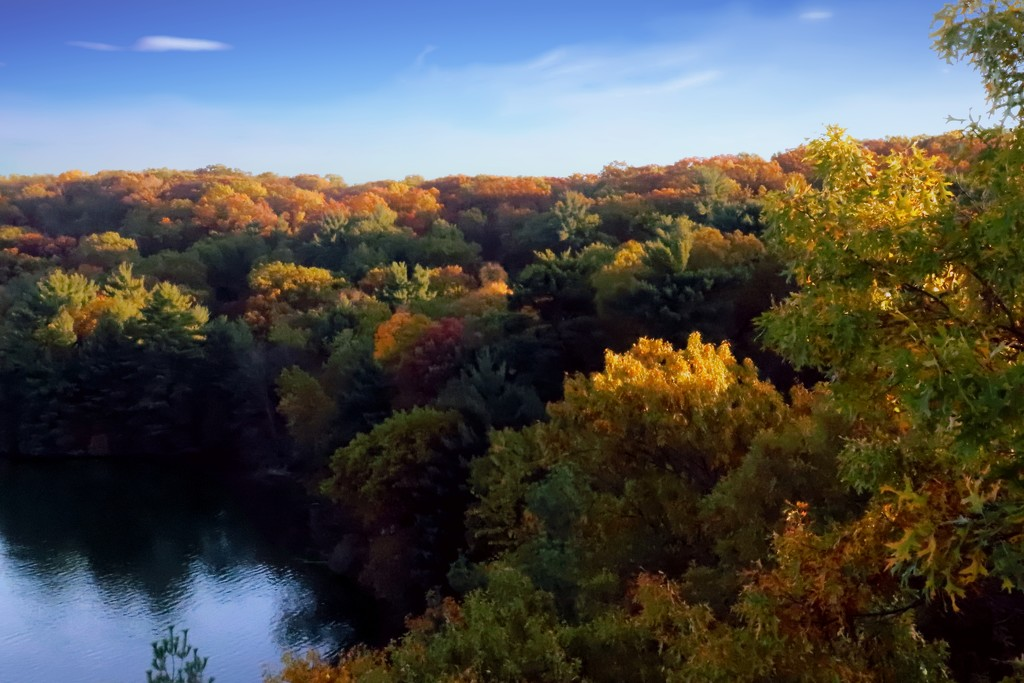 Fall Colors On The River by randy23