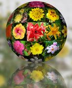26th Oct 2020 - 3D Flower Ball