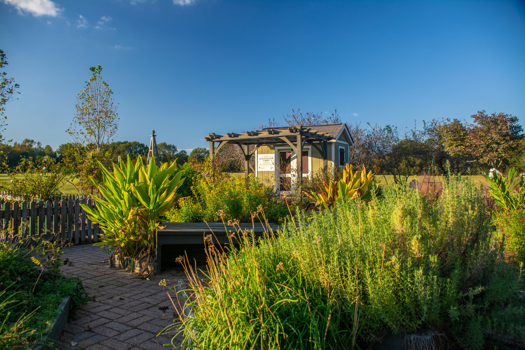 A garden at a local park... by thewatersphotos