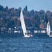 Cold Sailing