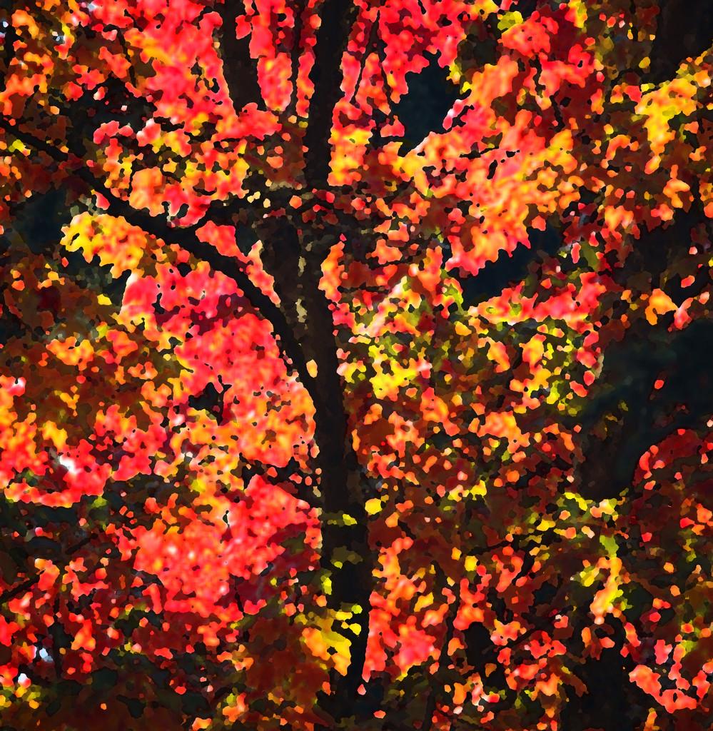 Dan's Tree by nanderson