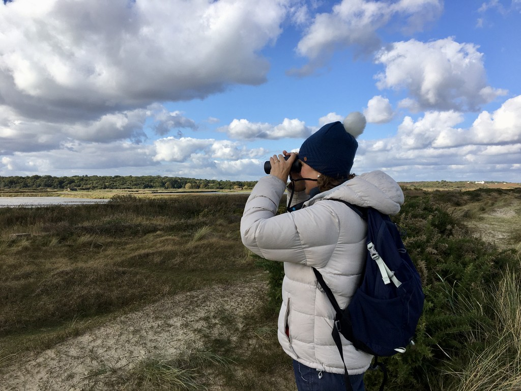 Birding at Minsmere, Suffolk by helly31