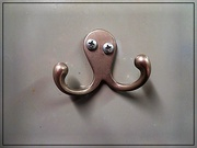 26th Oct 2020 - Kooky Octopus Base Shot