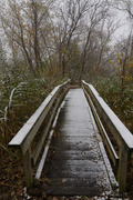 26th Oct 2020 - bridge