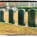 Y11 1026 Headstones