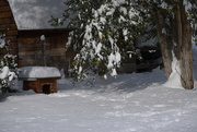 24th Oct 2020 - 15 Inches Overnight!