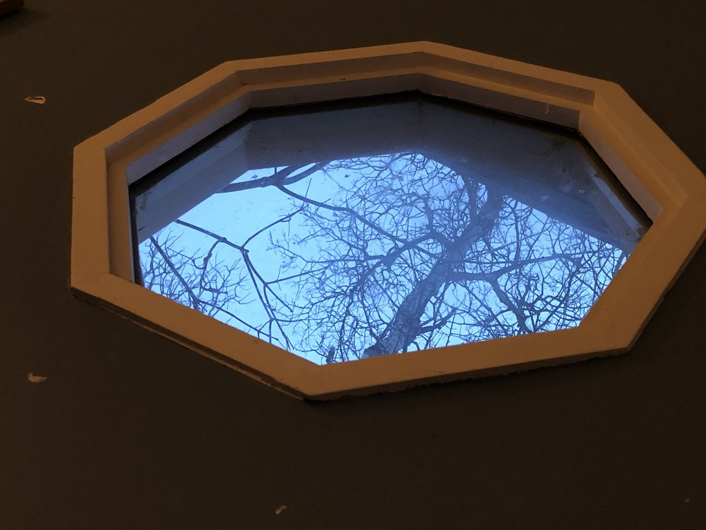 Perspective by rwaterhouse