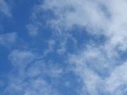 26th Oct 2020 - 20201026_085950 sky