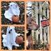 A Little Halloween Fun
