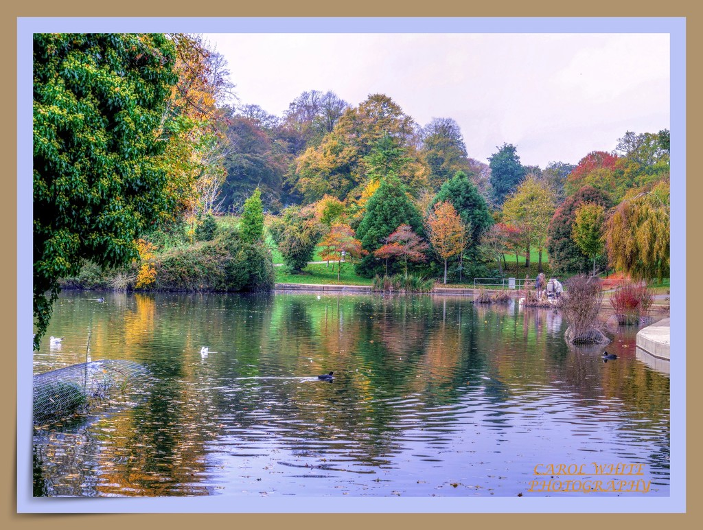 Autumn On The Lake by carolmw