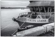 27th Oct 2020 - Viking Leader