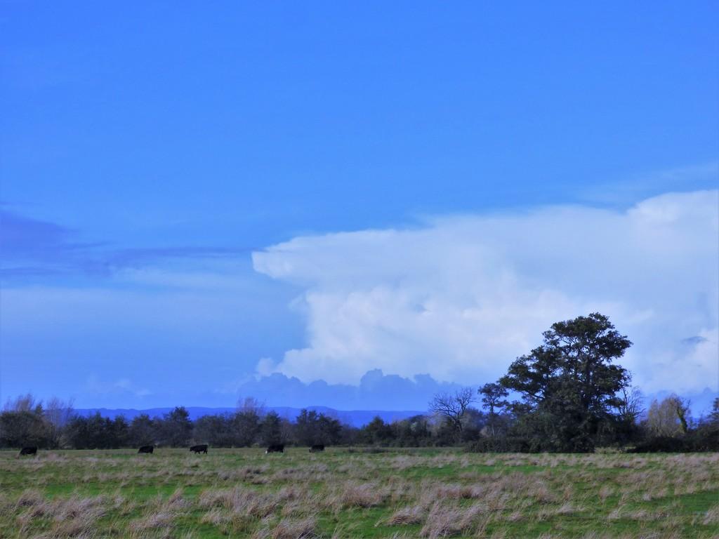 Gathering cloud by julienne1