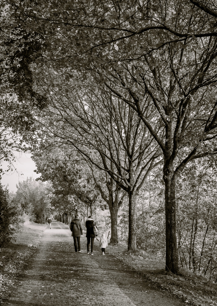 Family walk by the riverside... by vignouse