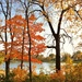 Fall At Its Finest by lynnz