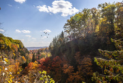 27th Oct 2020 - Dundas Valley Fall Colours