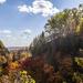 Dundas Valley Fall Colours