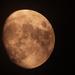 Tonight's Moon!