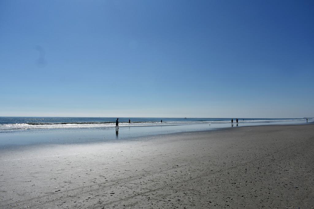 Socially Distanced Beach Day by homeschoolmom