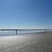 Socially Distanced Beach Day