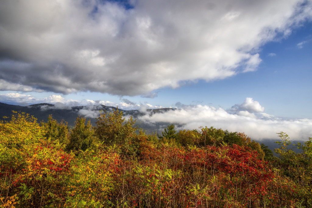 In the Clouds by kvphoto