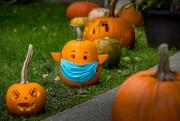 28th Oct 2020 - The new Hallowe'en